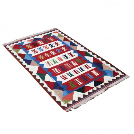 Checkered Hand Knotted Persian Area Rug